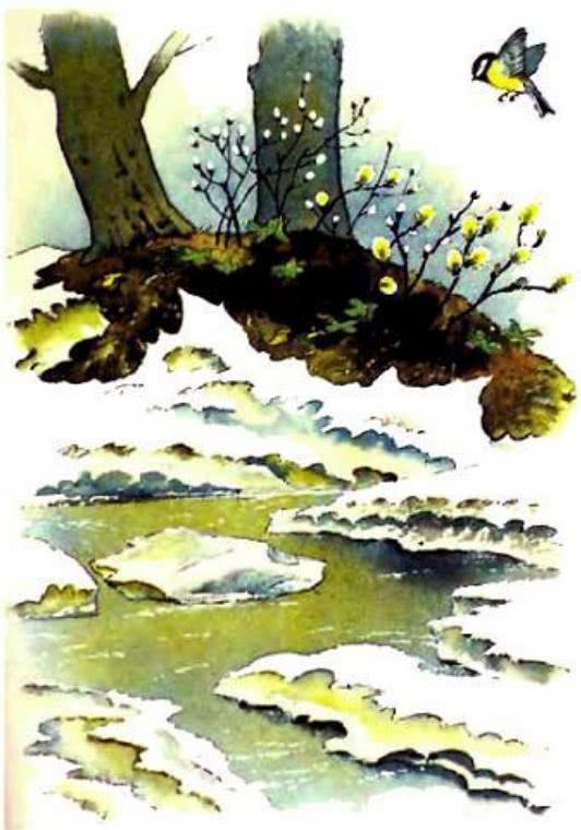 Синичкин календарь - Бианки В.В.