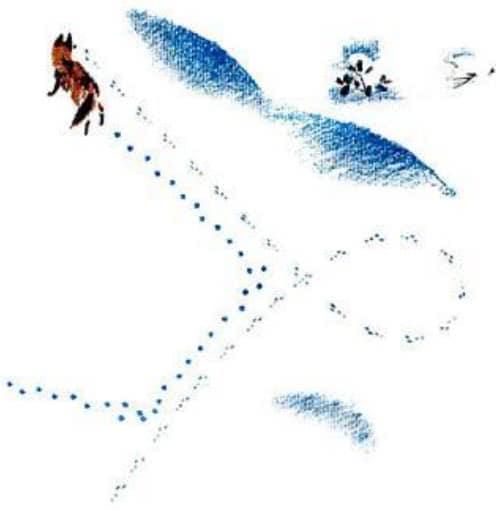 По следам: Снежная книга - Бианки В.В.