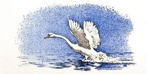 Лебеди - Толстой Л.Н.