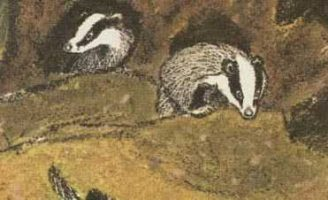 Барсучьи норы — Пришвин М.М. Рассказ про барсуков и их норки.