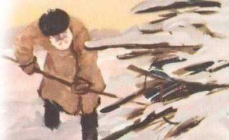 Беляк — Пришвин М.М. Рассказ про зимнюю охоту на зайца.