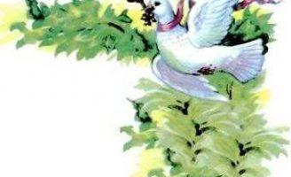 Белый голубок — немецкая народная сказка. Сказка про девушку и голубя. 0 (0)