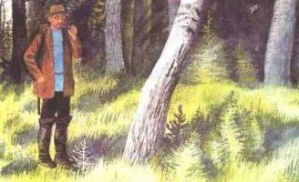 Берестяная трубочка — Пришвин М.М. Рассказ про трубочку из бересты.