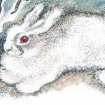 Что за зверь? - Чарушин Е.И. Рассказ про девочку и кролика.