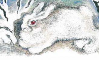 Что за зверь? — Чарушин Е.И. Рассказ про девочку и кролика.