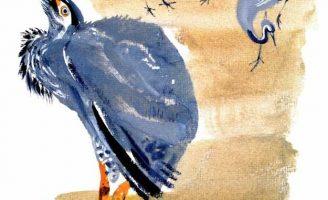 Цапля — Чарушин Е.И. Рассказ про птиц в зоопарке.