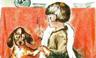 Как мальчик играл в доктора — Чарушин Е.И. Рассказ про мальчика Никиту.