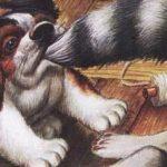 Как поссорились кошка с собакой - Пришвин М.М. Рассказ про животных.