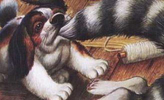 Как поссорились кошка с собакой — Пришвин М.М. Рассказ про животных.