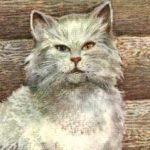 Кот Епифан - Чарушин Е.И. Рассказ про бакенщика и его кота Епифана.