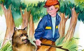 Кто хозяин? — Осеева В.А. Сказка про двух друзей и их собаку.