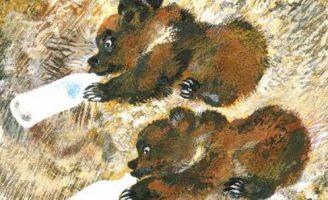 Мишки — Чарушин Е.И. рассказ про двух медвежат, растущих в деревне.