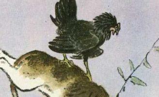 Пиковая дама — Пришвин М.М. Рассказ про очень задиристую курицу.