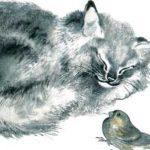 Почему Тюпа не ловит птиц - Чарушин Е.И. Рассказ про котенка Тюпу.