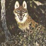 Полянка в лесу - Пришвин М.М. Рассказ про ежика и его привычки.