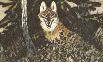 Полянка в лесу — Пришвин М.М. Рассказ про ежика и его привычки.