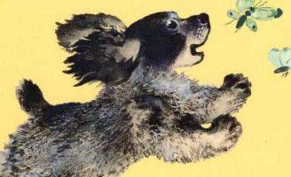 Про Томку — Чарушин Е.И. Рассказ про забавного щенка Томку.