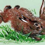 Про зайчат - Чарушин Е.И. Рассказ про то, как зайчатам кормилицу искали.