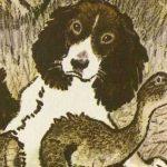 Сват - Пришвин М.М. Рассказ про охотничью собаку по имени Сват.