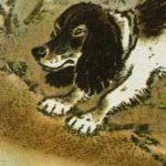 Трясогузка - Пришвин М.М. Как трясогузка с охотничьей собакой играла.