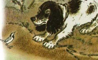 Трясогузка — Пришвин М.М. Как трясогузка с охотничьей собакой играла. 0 (0)