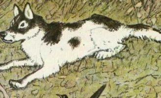 Выскочка — Пришвин М.М Как собаки у сороки косточки воровали.