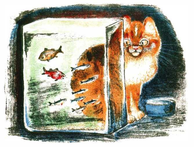 Кот и рыбки - Чарушин Е.И.