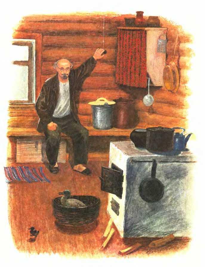 Изобретатель - Пришвин М.М. Рассказ про одного смышленого утенка.