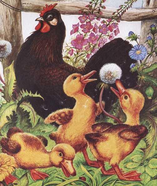 Курица на столбах - Пришвин М.М.