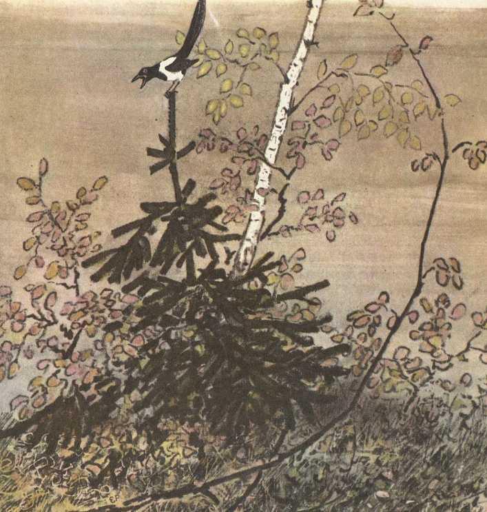 Полянка в лесу - Пришвин М.М.