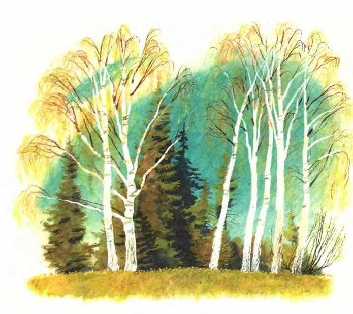 Разговор деревьев - Пришвин М.М.