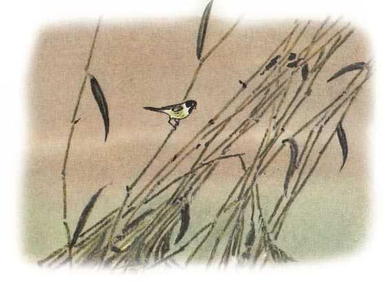 Разговор птиц и зверей - Пришвин М.М.