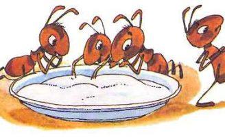 Муравей и сахар — Биссет Д. Сказка как муравьишка объелся сахара.