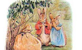 Пампушата — Поттер Б. Сказка про шестерых крольчат. 0 (0)
