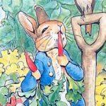 Сказка про Питера-кролика - Поттер Б. Как Питер бегал по огороду.