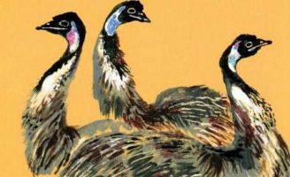 Животные жарких и холодных стран — Чарушин Е.И. Рассказ про животных. 5 (1)