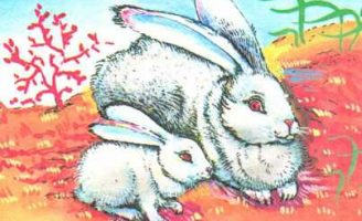 Загадочки — Козлов С.Г. Стихи-загадки про животных и их детенышей.