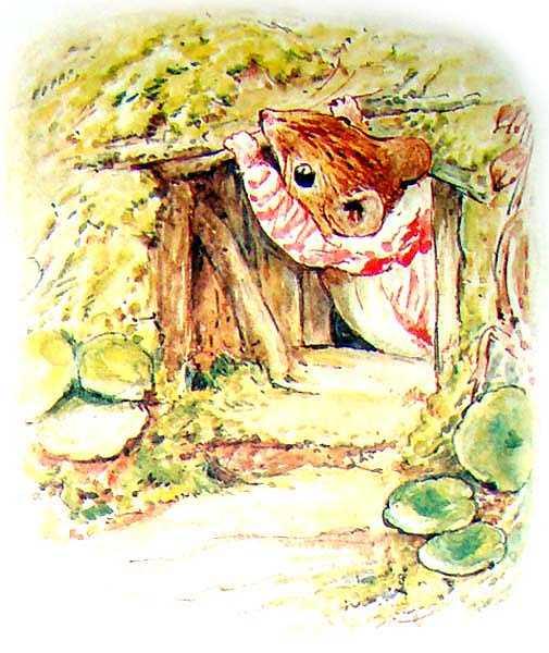 Сказка о миссис Мышке-Малютке - Поттер Б.