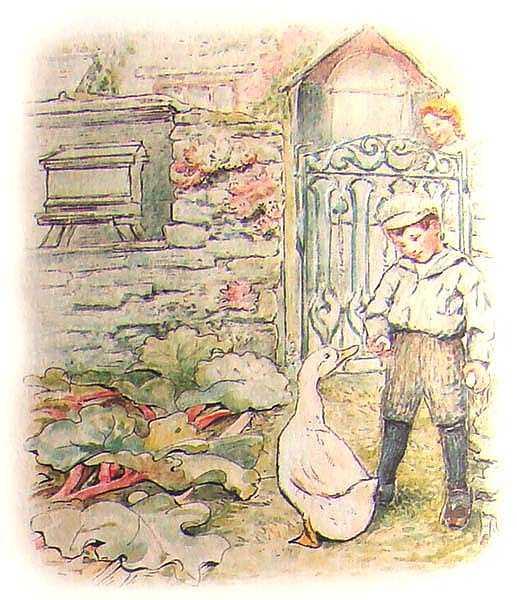Сказка про Джемайму Плюхвводу - Поттер Б.
