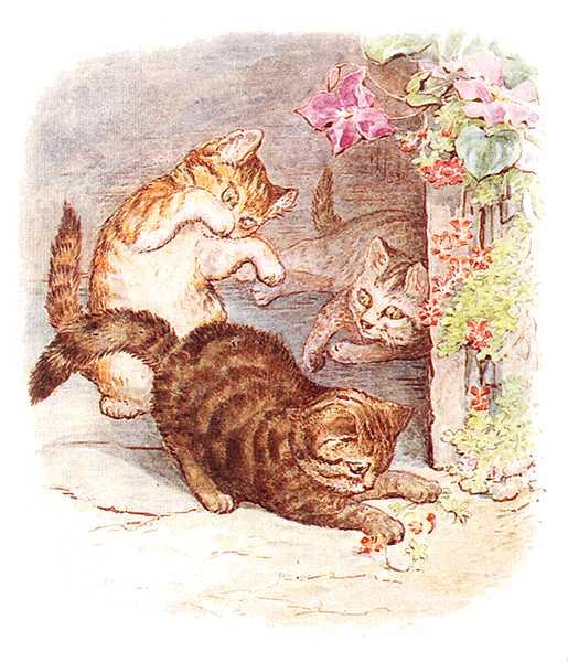 Сказка про котенка Тома - Поттер Б.