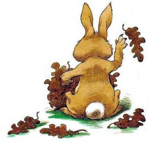 Про Ёжика и Кролика Кусочек зимы - Стюарт П. и Риддел К.