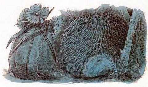 Про Ёжика и Кролика: Подарки в день рождения - Стюарт П. и Риддел К.