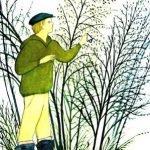 Весенний вечер - Коваль Ю.И. Рассказ про наблюдения за природой в лесу