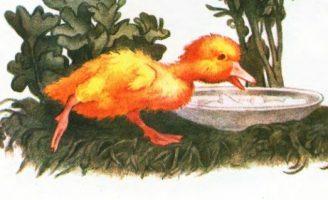 Храбрый утенок — Житков Б.С. История про утят и стрекозу. 5 (1)