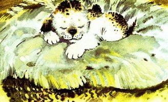 А я кто? — Абрамцева Н. Сказка про маленького щенка.