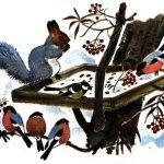 Белочка-хлопотунья - Скребицкий Г. Рассказ про жизнь белок в лесу.