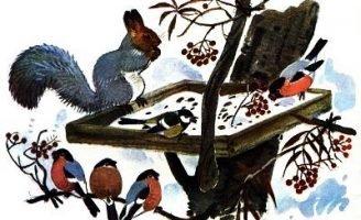 Белочка-хлопотунья — Скребицкий Г. Рассказ про жизнь белок в лесу.