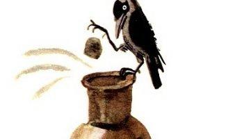 Галка и кувшин — Толстой Л.Н. Басня про смекалистую галку.