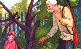 Горячий камень — Гайдар А. Рассказ про мальчика и старика.