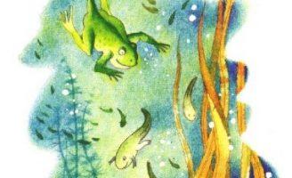 Куда спешат головастики — Заходер Б. Стих про будущих лягушат.